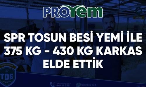SPR Tosun Besi Yemi ile 375 kg - 430 kg karkas elde ettik! - Proyem ile Kazananlar